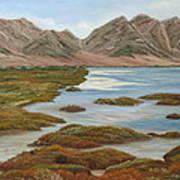 Salt Marsh Art Print