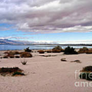 Salton Sea California Art Print