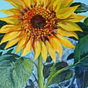 Salute The Sun Art Print