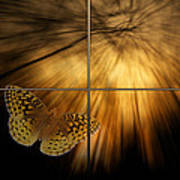 Sample Paneled Following The Light Yellow Butterfly Art Print