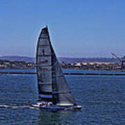 San Diego Harbor Sailing Art Print