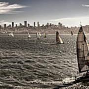 San Francisco Sails Art Print
