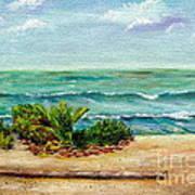 San Onofre Beach Art Print