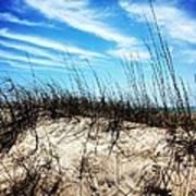 Sand Dune At Alantic Beach Art Print by Joan Meyland