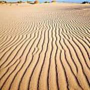 Sand Dunes At Eucla Art Print
