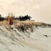 Sand Dunes At Penny Beach Art Print