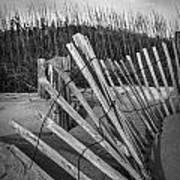 Sand Fence Art Print
