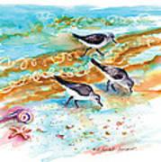 Sandpiper Trio Art Print