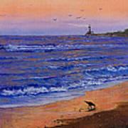 Sandpiper At Sunset Art Print