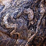 Sandstone Boulder Detail Art Print
