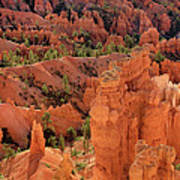 Sandstone Hoodoos At Sunrise Bryce Canyon National Park Utah Art Print