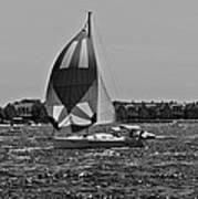 Sandy Hook Sailing II Art Print