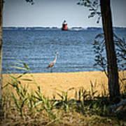 Sandy Pt Shoal Lighthouse And Blue Heron Art Print