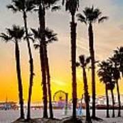 Santa Monica Palms Art Print