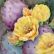Santa Rita In Bloom Art Print