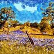 Santa Rosa Field Art Print