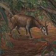 Saola Print by ACE Coinage painting by Michael Rothman