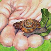 Sarah's Snail Art Print