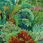 Sarasota Garden Art Print