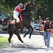Saratoga Race Track Paddock Art Print