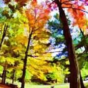 Saratoga Tree Art Print