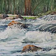 Sauble Falls Art Print