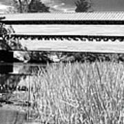 Saucks Bridge And Reeds Art Print
