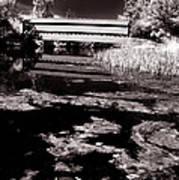 Saucks Bridge Down Stream Art Print