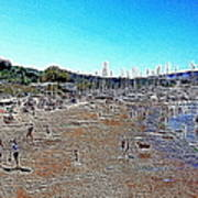 Sausalito Beach Sausalito California 5d22696 Artwork Art Print