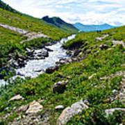 Savage River From Savage River Trail In Denali Np-ak    Art Print