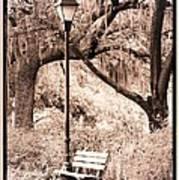 Savannah Bench Sepia Art Print