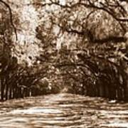 Savannah Sepia - The Old South Art Print