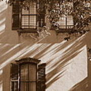 Savannah Sepia - Windows Art Print