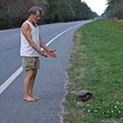 Saving The Turtle Art Print