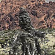 Scarecrow Cactus Art Print