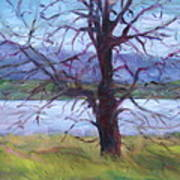 Scenic Landscape Painting Through Tree - Spring Has Sprung - Color Fields - Original Fine Art Art Print