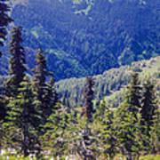 Scenic Mountain Valley Art Print