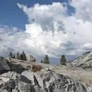 Scenic View In Yosemite National Park Art Print