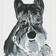 Schnauzing Around Art Print