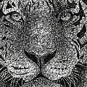 Scribble Tiger Art Print