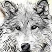 Scrimshaw Grey Wolf Art Print
