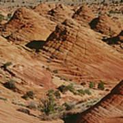Sculpted Colorado Sandstone Paria Canyon Art Print