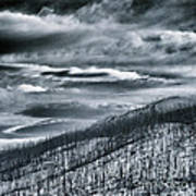 Land Shapes 27 Art Print