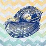 Sea Shell-c Art Print