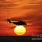 Sea Dragon Sunset Art Print
