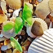 Sea Glass And Shells 17 10/2 Art Print