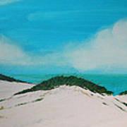 Sea Oat Dune 4 Art Print