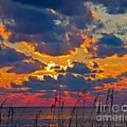 Sea Oats Silhouette Art Print