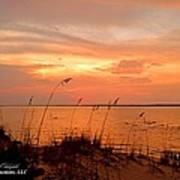 Sea Oats Sunset  Art Print