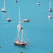 Sea Of Sailboats Art Print